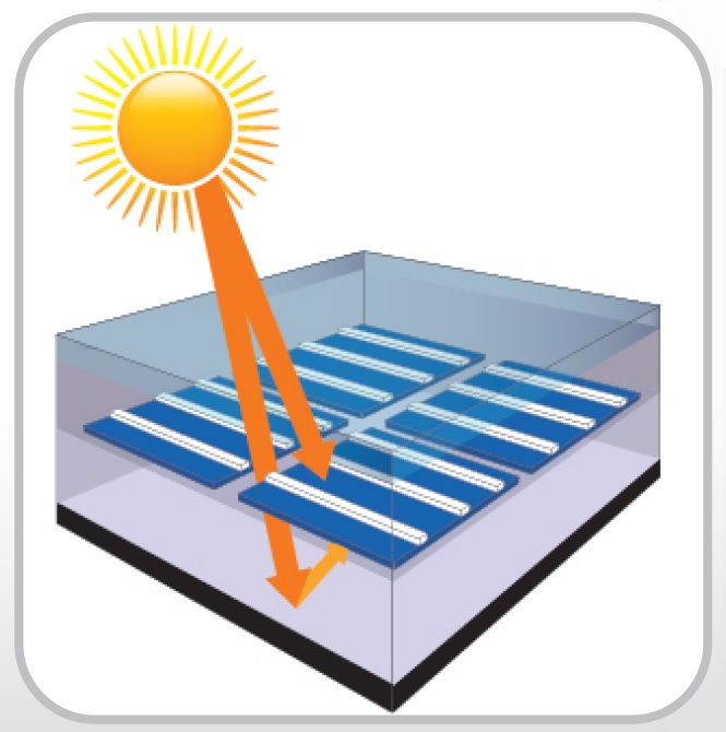 可吸收來自兩側的太陽光能