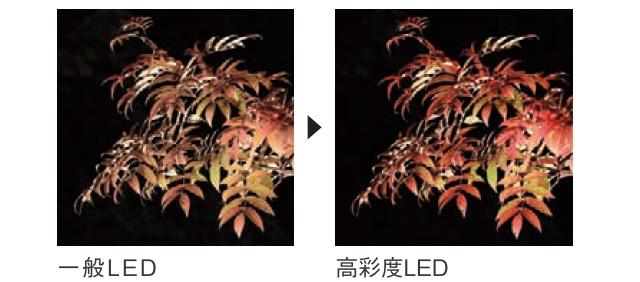 led_prd_n3
